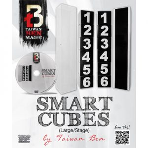 Smart Cubes (Large / Stage) by Taiwan Ben