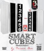 Smart Cubes (Medium / Parlor) by Taiwan Ben