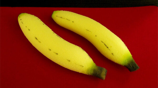 Sponge Bananas (large/2 pieces) by Alexander May