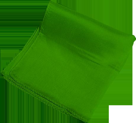Silk 6 inch (Green) Magic By Gosh