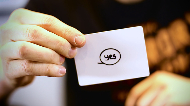 Decisions Yes/No Edition by Mozique - DVD
