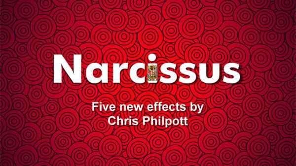 Narcissus by Chris Philpott