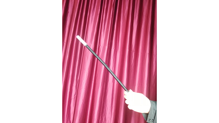 Wilting Magic Wand by Strixmagic