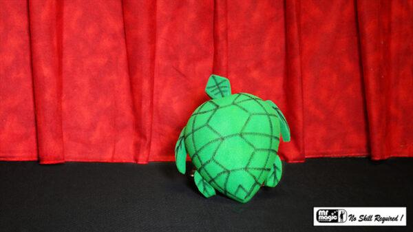 Egg to Tortoise (Sponge) by Mr. Magic