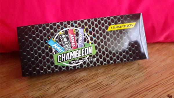 Chameleon by Marcos Cruz
