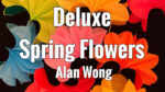 Deluxe Spring Flowers by Alan Wong