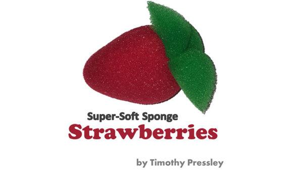 Super-Soft Sponge Strawberries by Timothy Pressley and Goshman