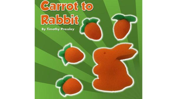 Sponge Carrot to Rabbit by Timothy Pressley and Goshman