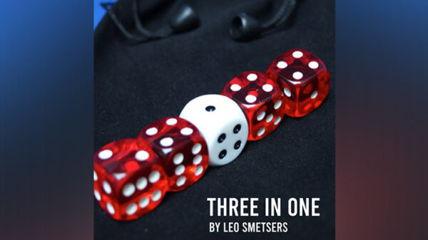 3 in 1 by Leo Smetsers