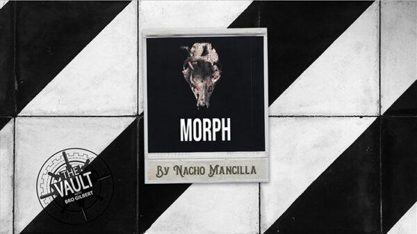 The Vault - MORPH by Nacho Mancilla Mixed Media DOWNLOAD