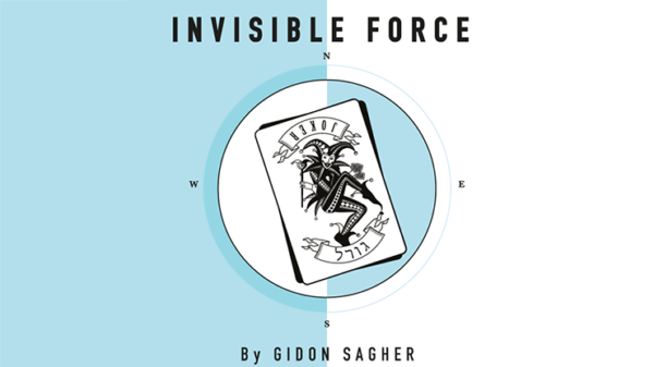 Invisible Force by Gidon Sagher eBook DOWNLOAD