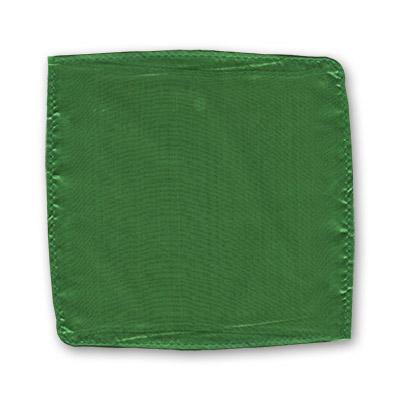Silk 12 inch Single (Green) Magic by Gosh