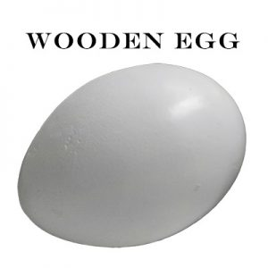 Wooden Egg by Mr. Magic