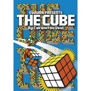 The Cube by Takamitsu Usui - DVD
