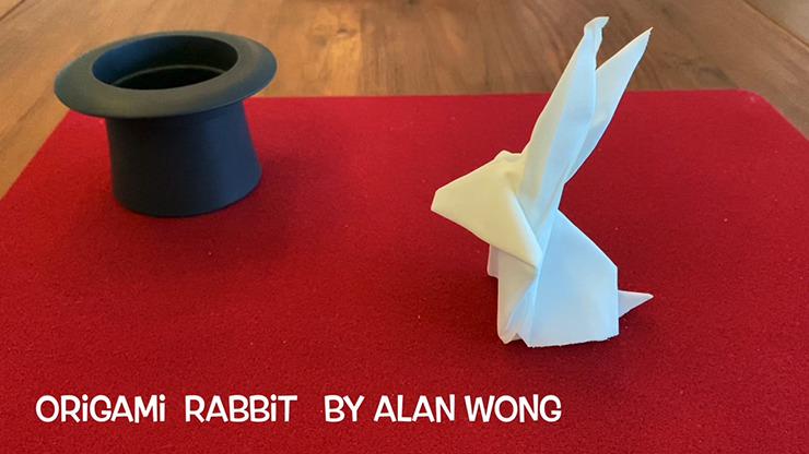 Origami Rabbit by Alan Wong