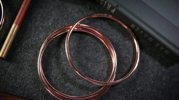 """4"""" Linking Rings (Rose) by TCC"""