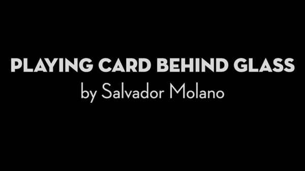 Playing Card Behind Glass by Salvador Molano video DOWNLOAD - Download