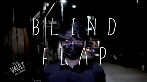 The Vault - Blind Flap Project by PH and Mario Tarasini video DOWNLOAD - Download
