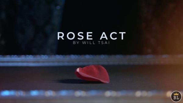 Visual Matrix AKA Rose Act Valorous Silver by Will Tsai and SansMinds