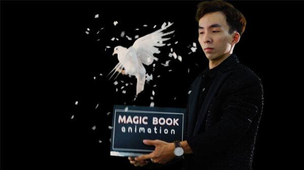 DOVE BOOK by 7 MAGIC