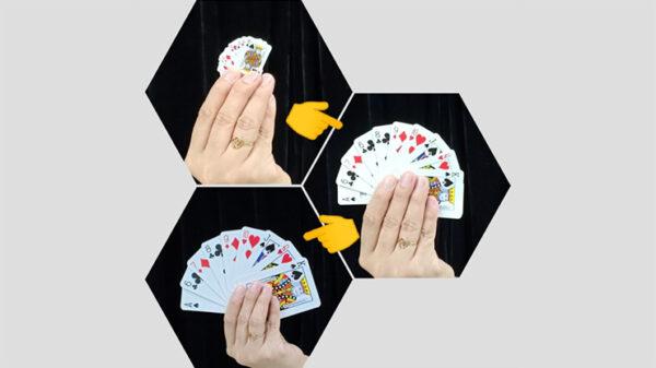 REVERSE CARD by JL Magic