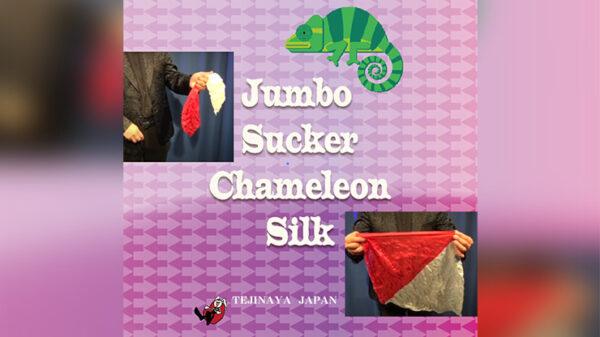 Jumbo Sucker Chameleon Silk by Tejinaya Magic