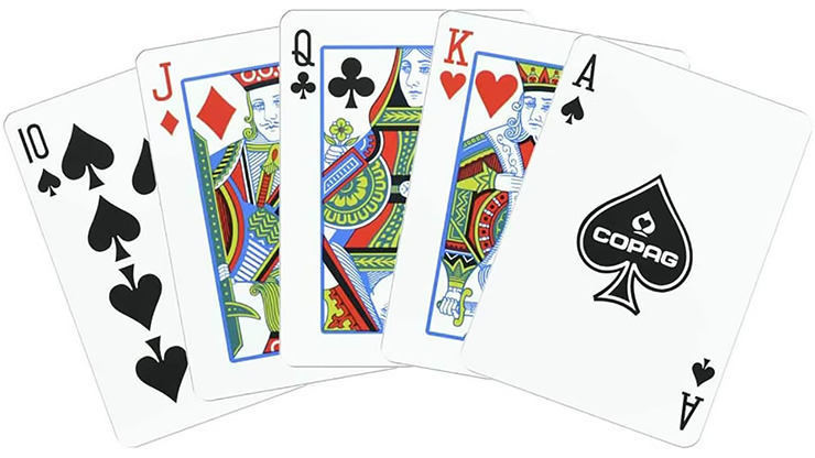 Copag Unique Plastic Playing Cards Poker Size Regular Index Black and Gold Double-Deck Set
