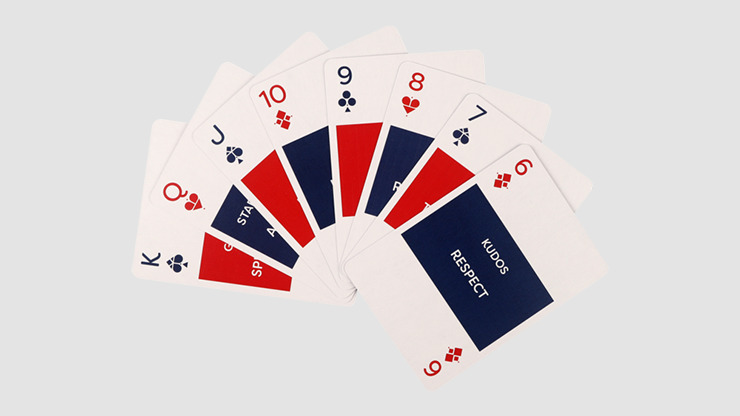Lingo (American Slang) Plying Cards