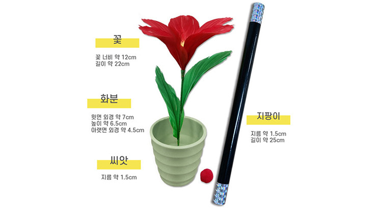 WAND TO FLOWER by JL Magic