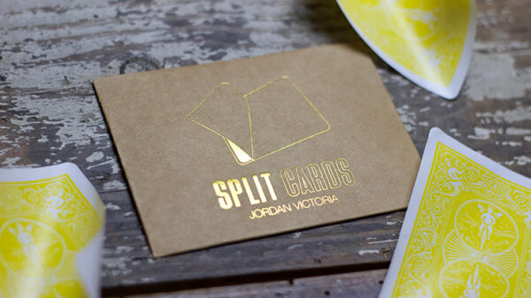 COLORED Split Cards 10 ct. (Yellow) by PCTC