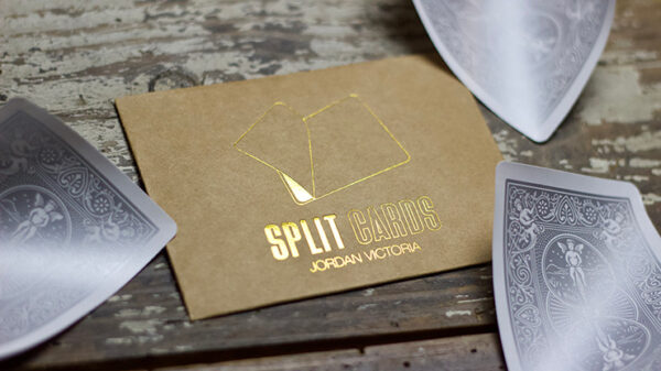 COLORED Split Cards 10 ct. (Silver) by PCTC