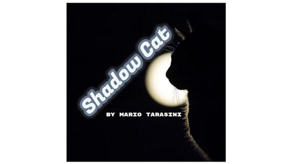 Shadow Cat by Mario Tarasini video DOWNLOAD - Download
