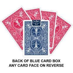 Back Of Blue Card Box Card