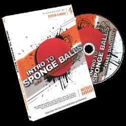 Intro to Sponge Balls by Michael Dardant - DVD