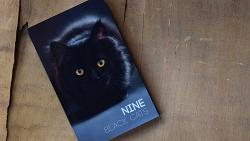 Nine Black Cats by Neemdog and Lorenzo - Book