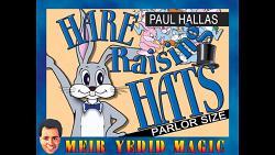 Hare Raising Hats (Parlor Size) by Paul Hallas - Trick