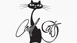 Cool CATS by Matthew Wright and Toby Davies