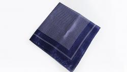 Syouma Silk (Blue) by Tejinaya Magic - Trick