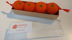 Fruit Sponge Ball (Orange) by Hugo Choi - Trick